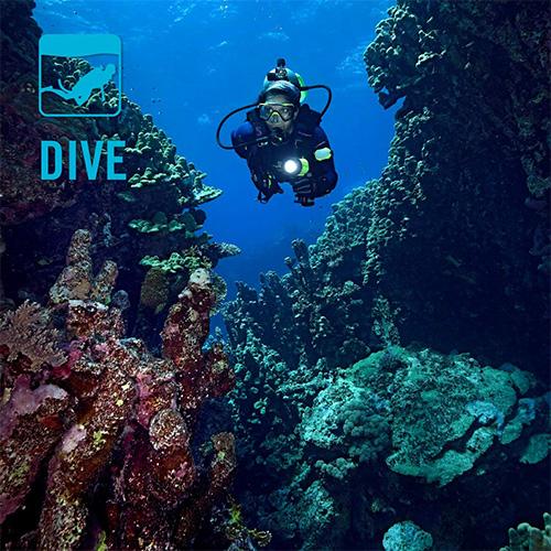 2018 Dive Catalog